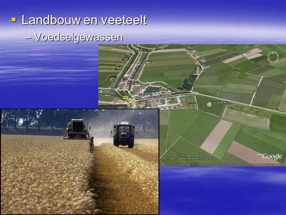 Landbouw en veeteelt Voedselgewassen