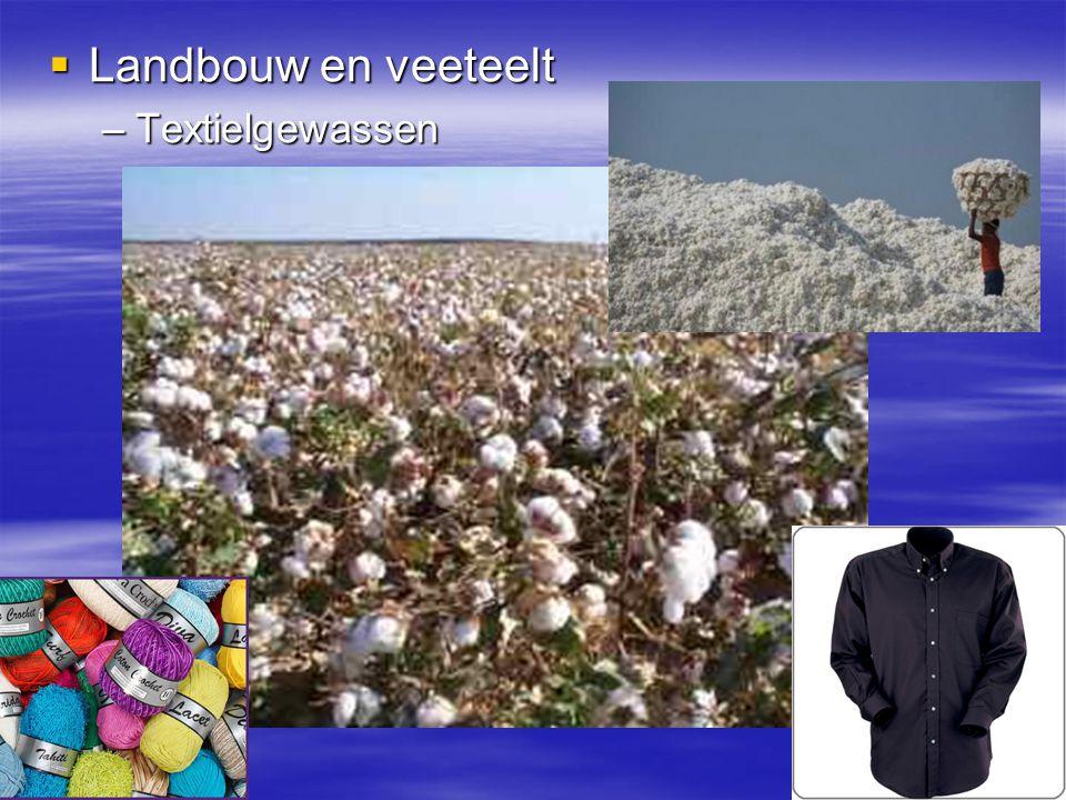 Landbouw en veeteelt Textielgewassen