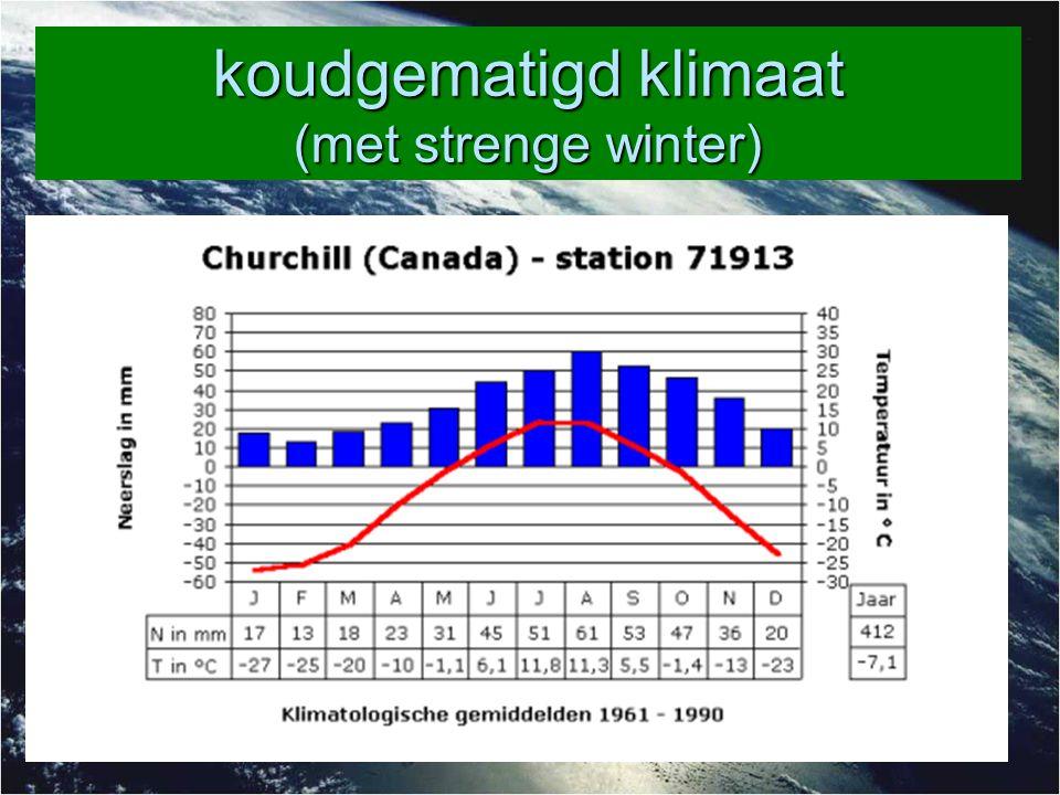 koudgematigd klimaat (met strenge winter)