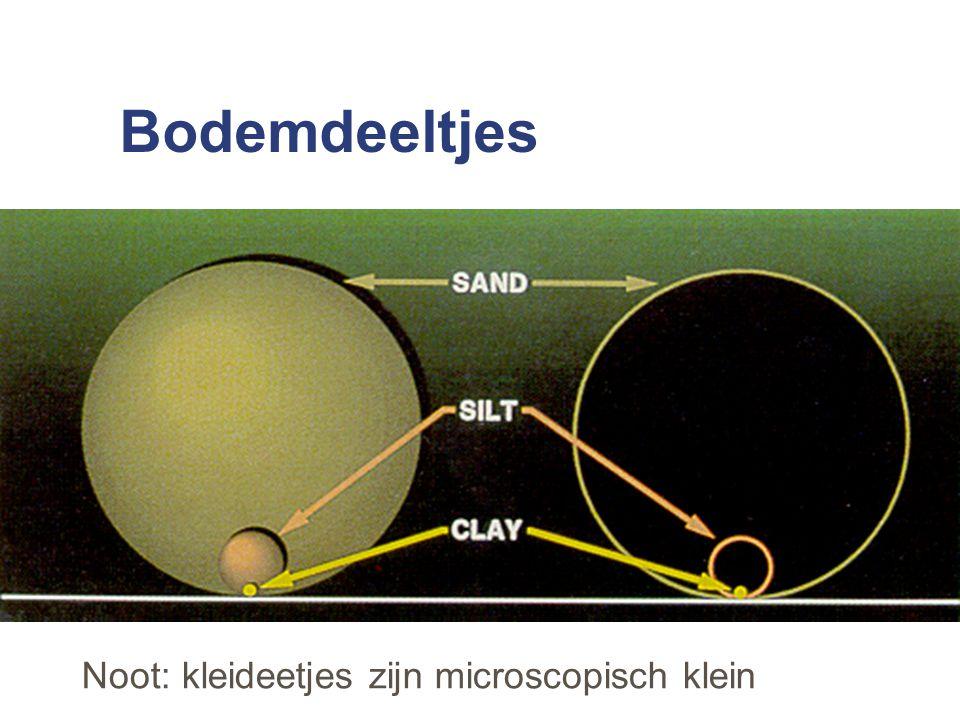 Bodemdeeltjes Noot: kleideetjes zijn microscopisch klein