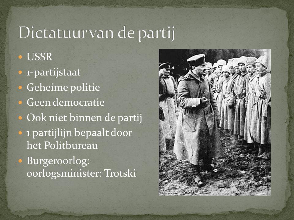 Dictatuur van de partij