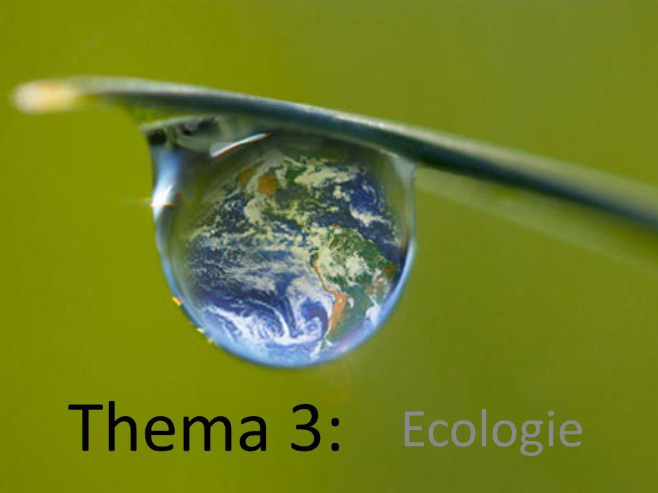 Thema 3: Ecologie
