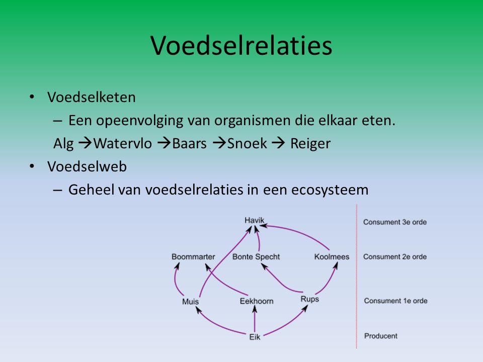 Voedselrelaties Voedselketen