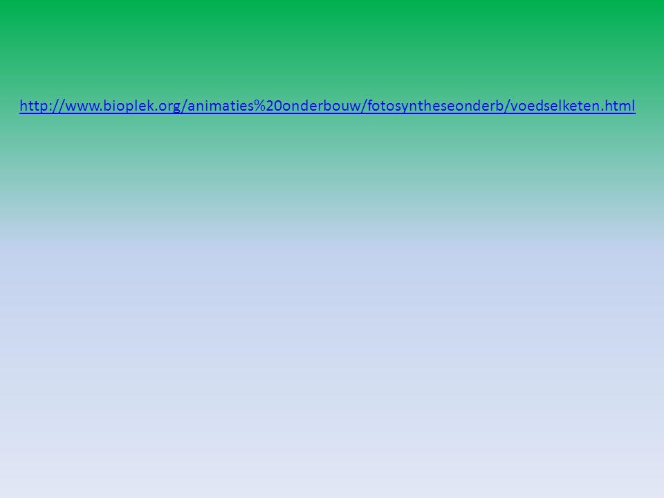 http://www.bioplek.org/animaties%20onderbouw/fotosyntheseonderb/voedselketen.html