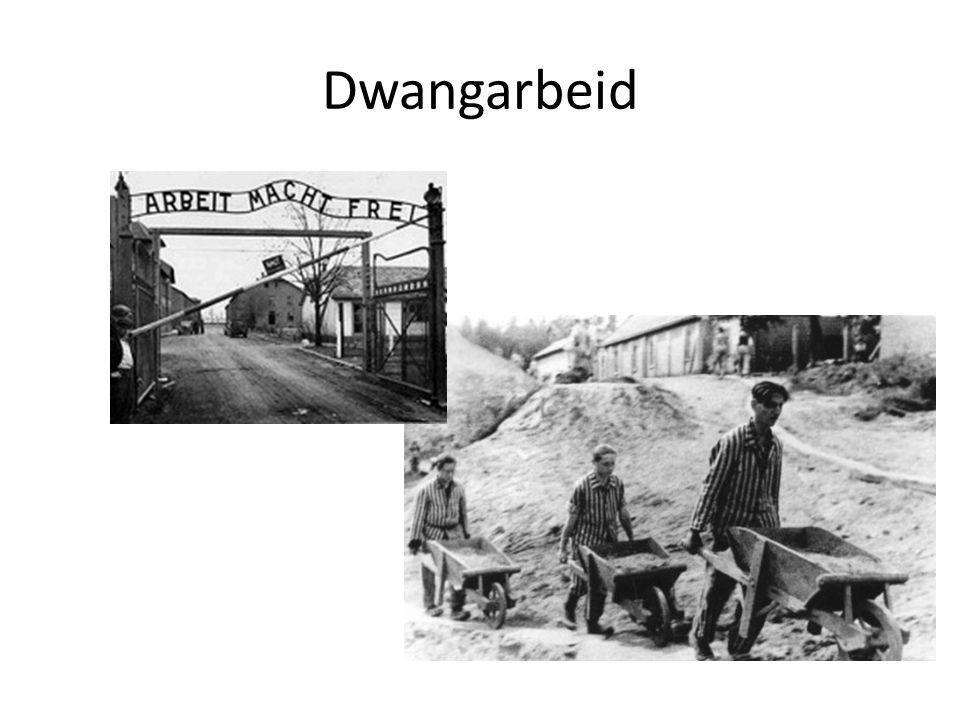 Dwangarbeid