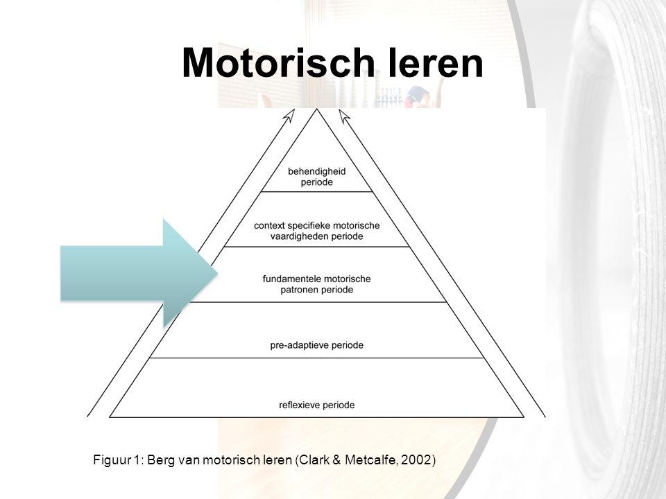 Motorisch leren Visie van het boek. Uitleg over bouwstenen. Indeling op hoofdfase (mechanica), later nog op terug.