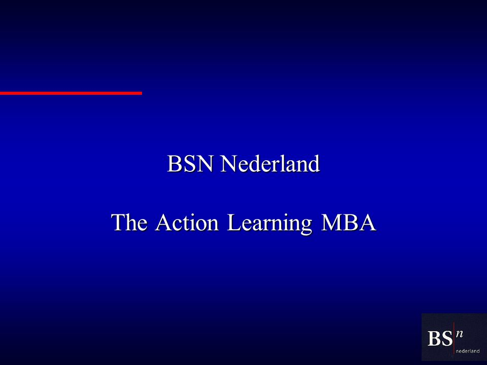 BSN Nederland The Action Learning MBA