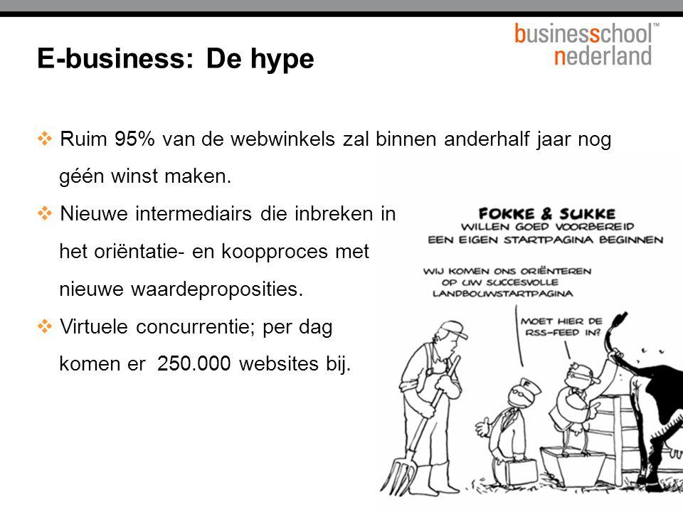 Titel presentatie E-business: De hype. Ruim 95% van de webwinkels zal binnen anderhalf jaar nog. géén winst maken.