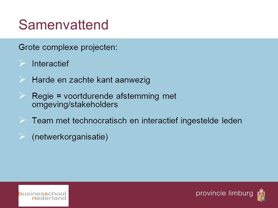 Samenvattend Grote complexe projecten: Interactief