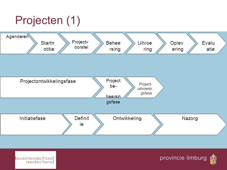 Projectontwikkelingsfase