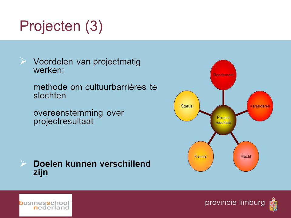 Projecten (3) Voordelen van projectmatig werken: