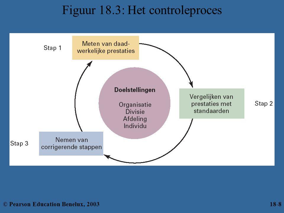 Figuur 18.3: Het controleproces