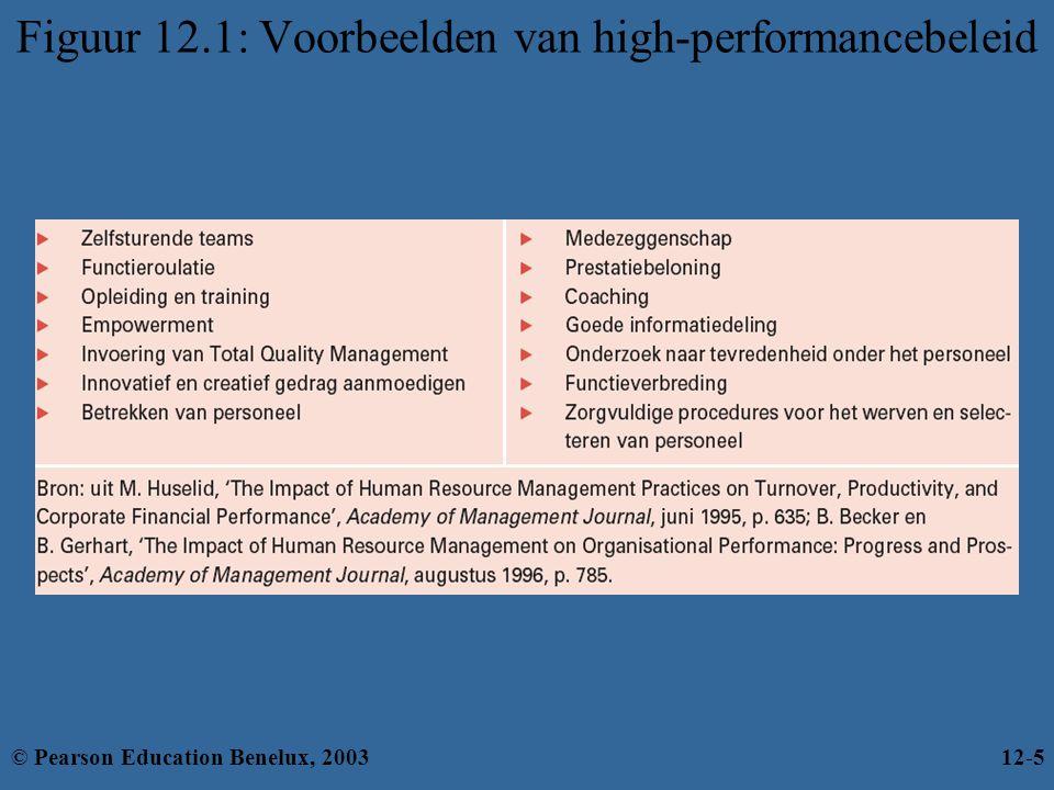 Figuur 12.1: Voorbeelden van high-performancebeleid