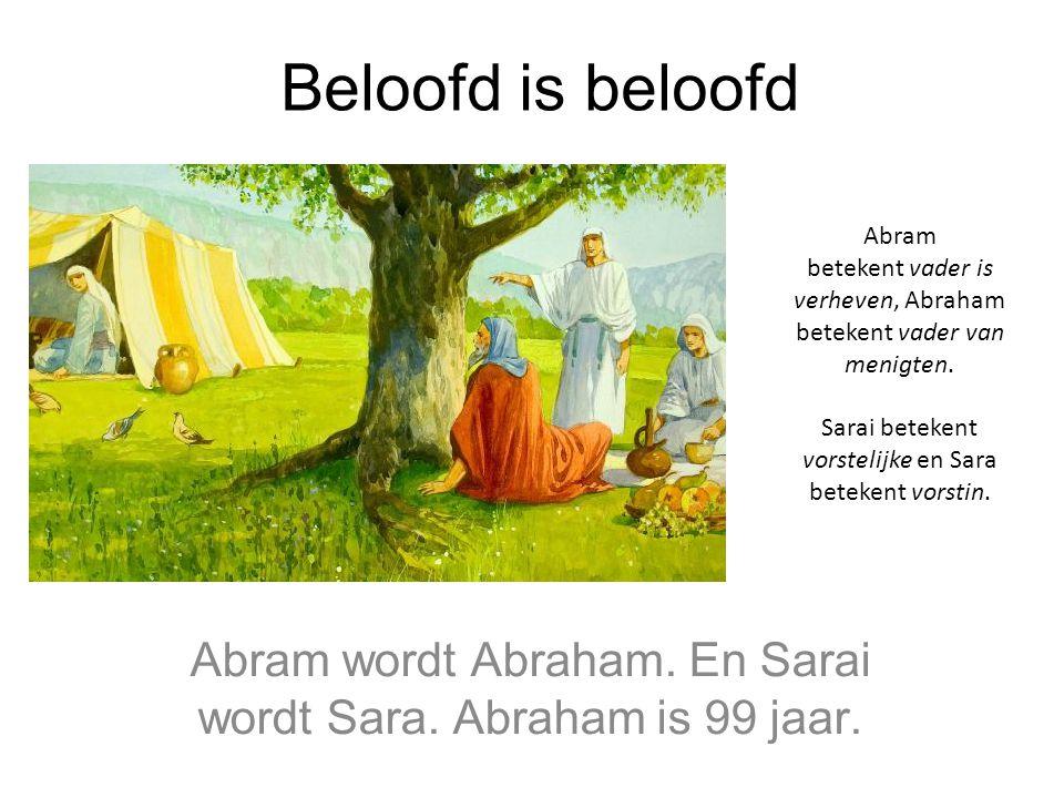 Abram wordt Abraham. En Sarai wordt Sara. Abraham is 99 jaar.