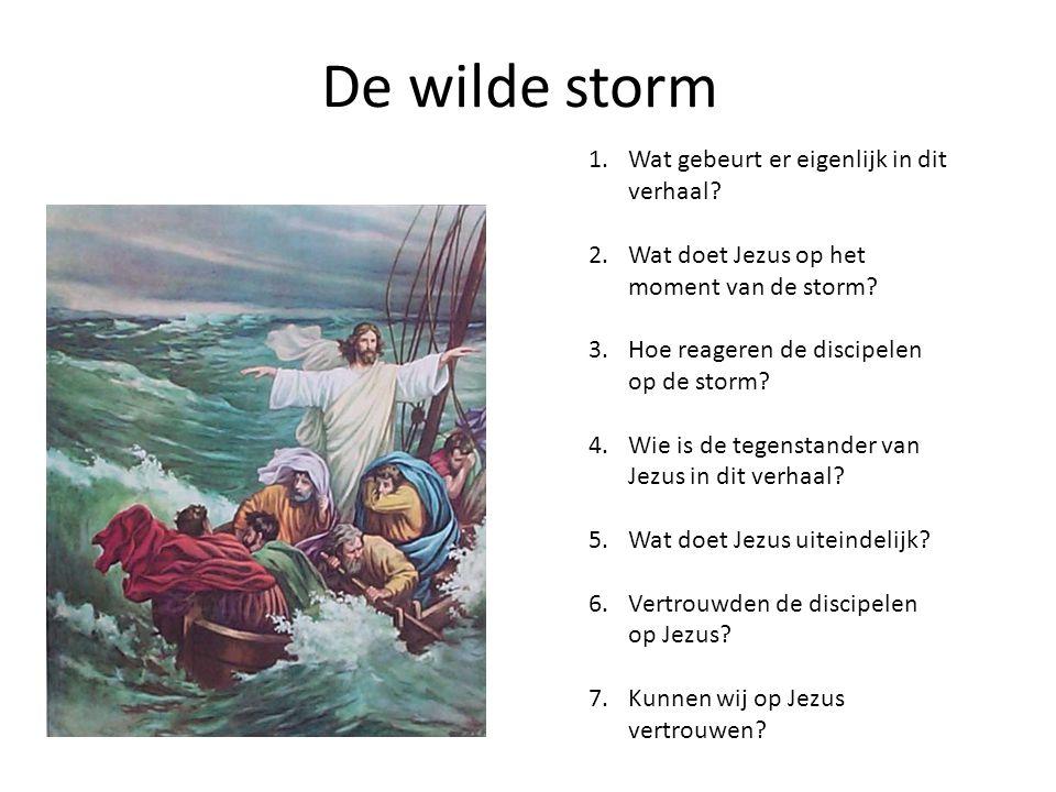 De wilde storm Wat gebeurt er eigenlijk in dit verhaal