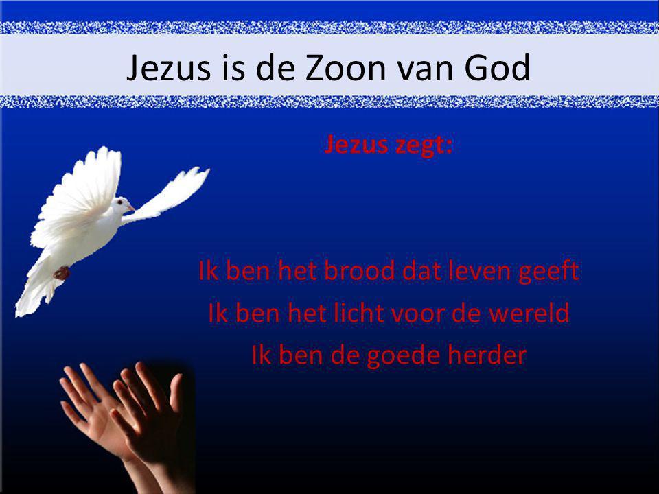Jezus is de Zoon van God Jezus zegt: Ik ben het brood dat leven geeft