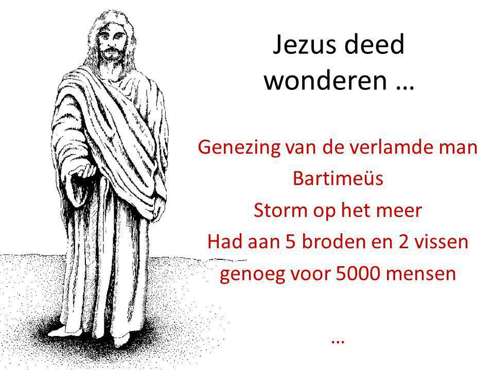 Jezus deed wonderen … Genezing van de verlamde man Bartimeüs