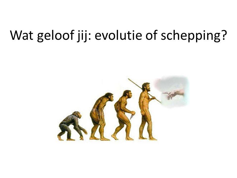 Wat geloof jij: evolutie of schepping