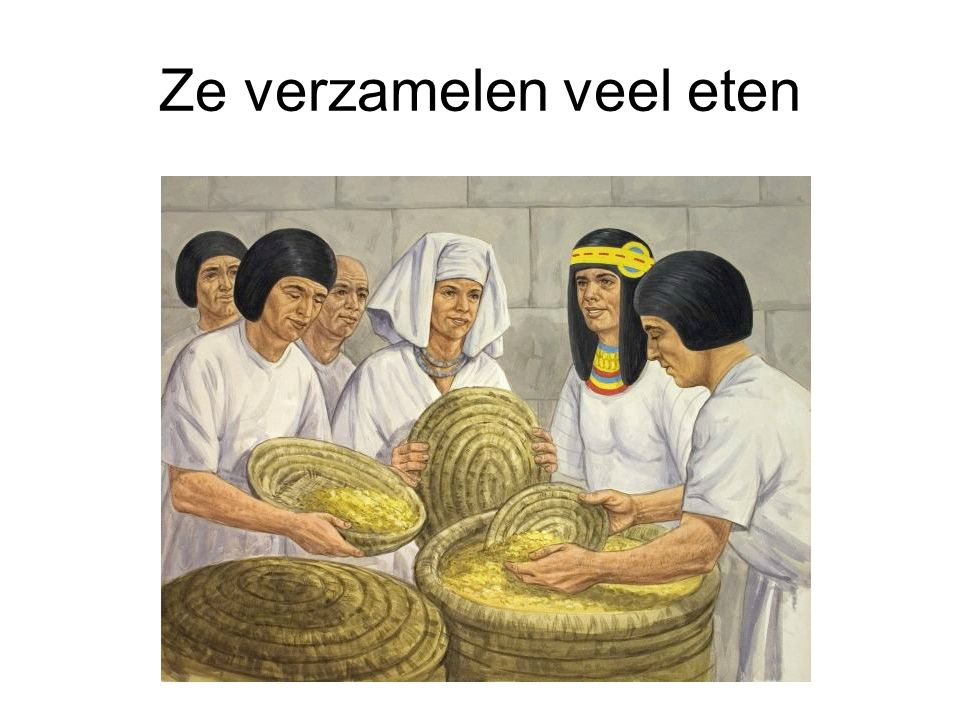 Ze verzamelen veel eten