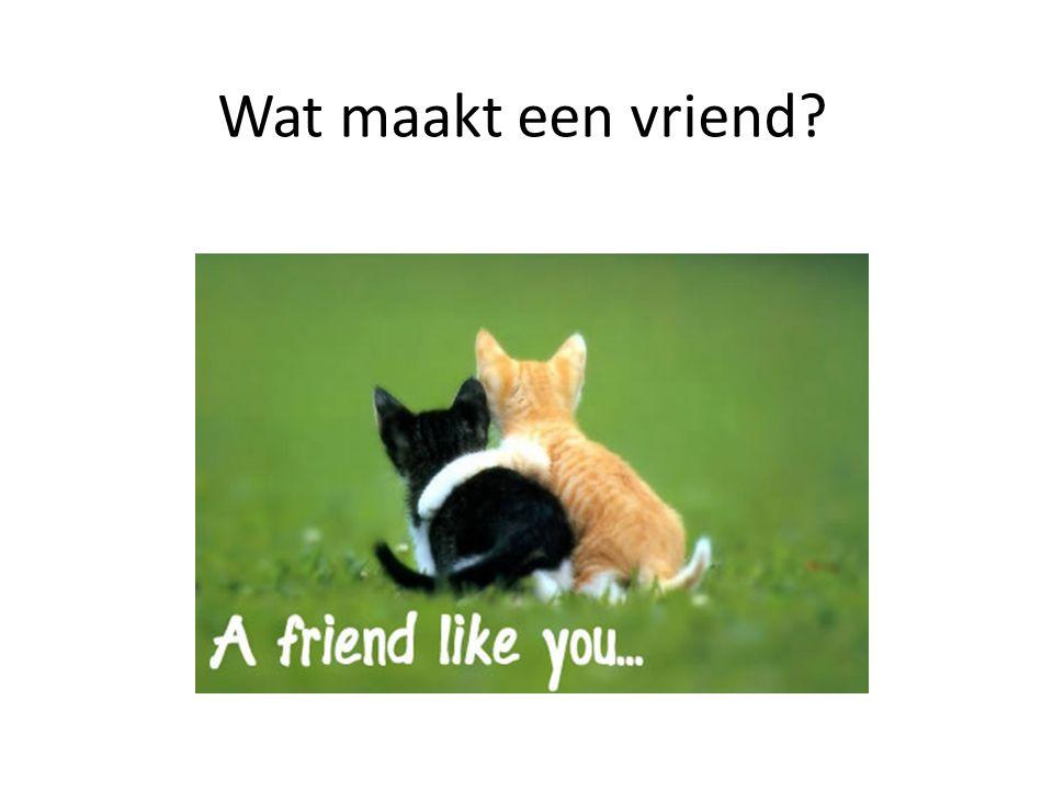Wat maakt een vriend