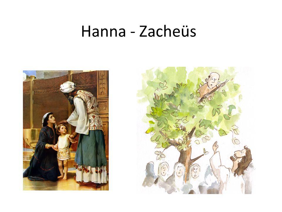 Hanna - Zacheüs