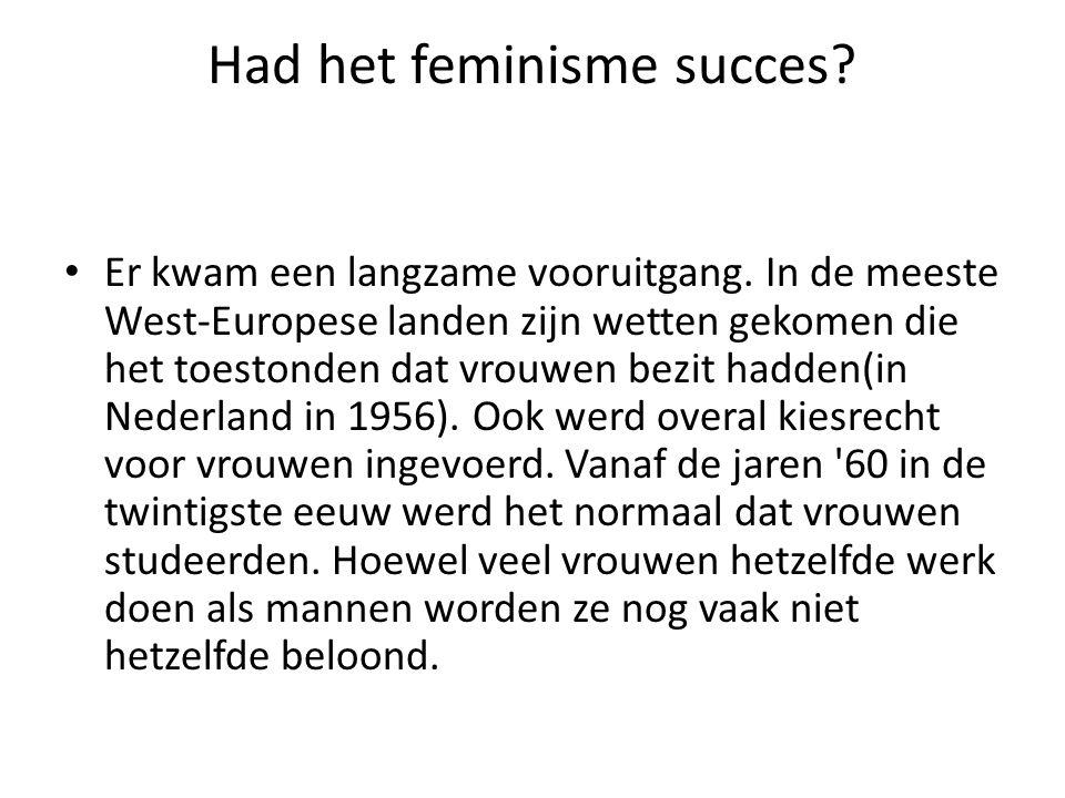 Had het feminisme succes