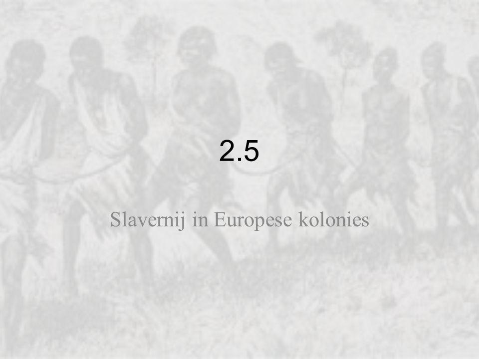 Slavernij in Europese kolonies