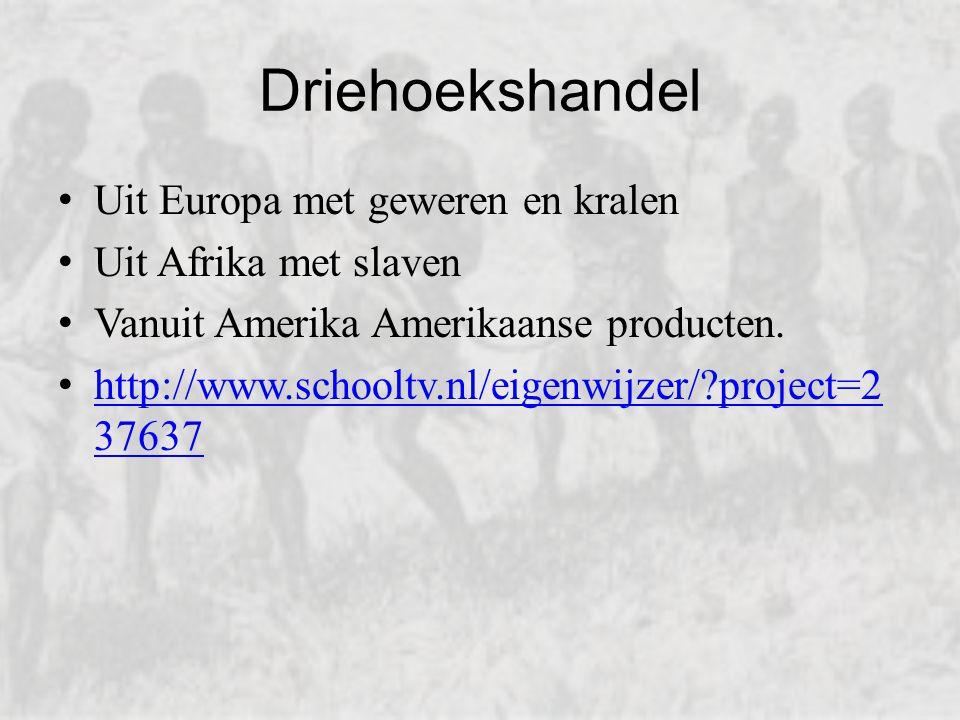 Driehoekshandel Uit Europa met geweren en kralen Uit Afrika met slaven