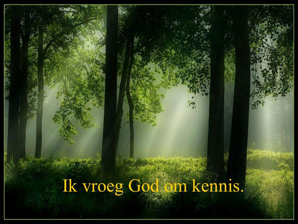 Ik vroeg God om kennis.