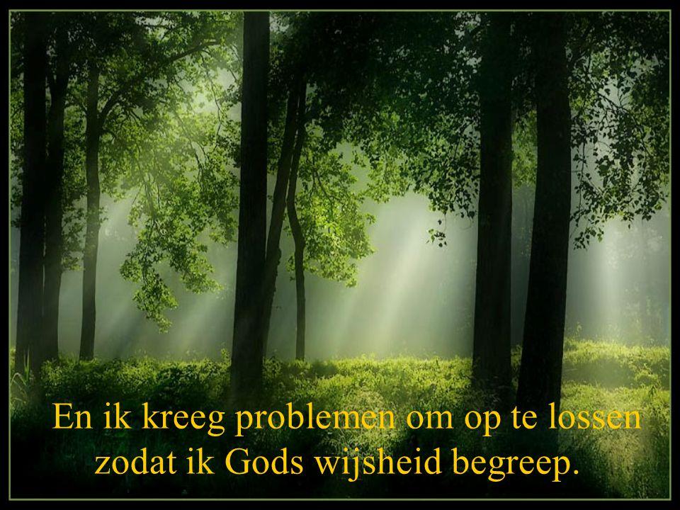 En ik kreeg problemen om op te lossen zodat ik Gods wijsheid begreep.