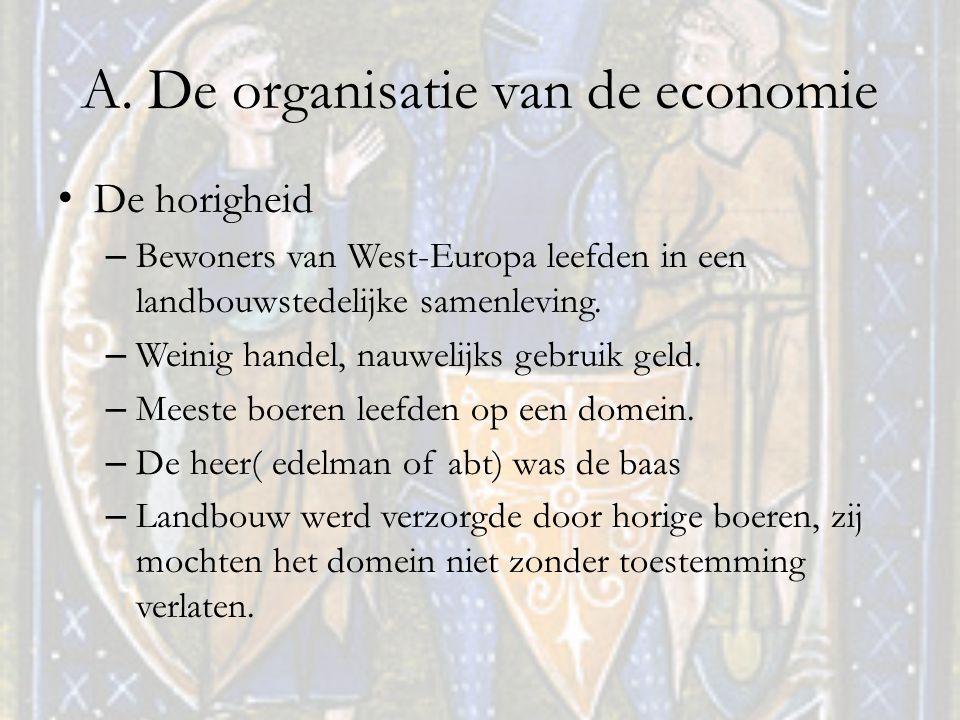 A. De organisatie van de economie