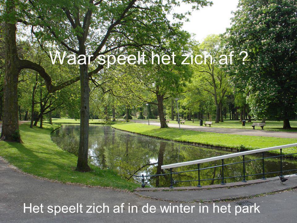 Waar speelt het zich af Het speelt zich af in de winter in het park