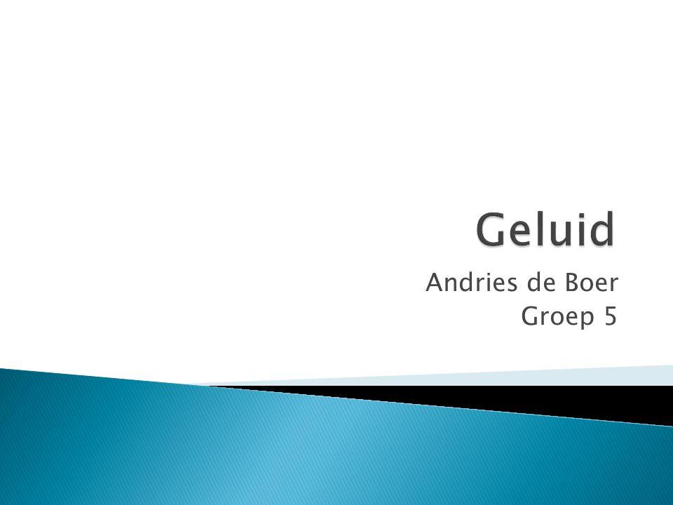 Geluid Andries de Boer Groep 5