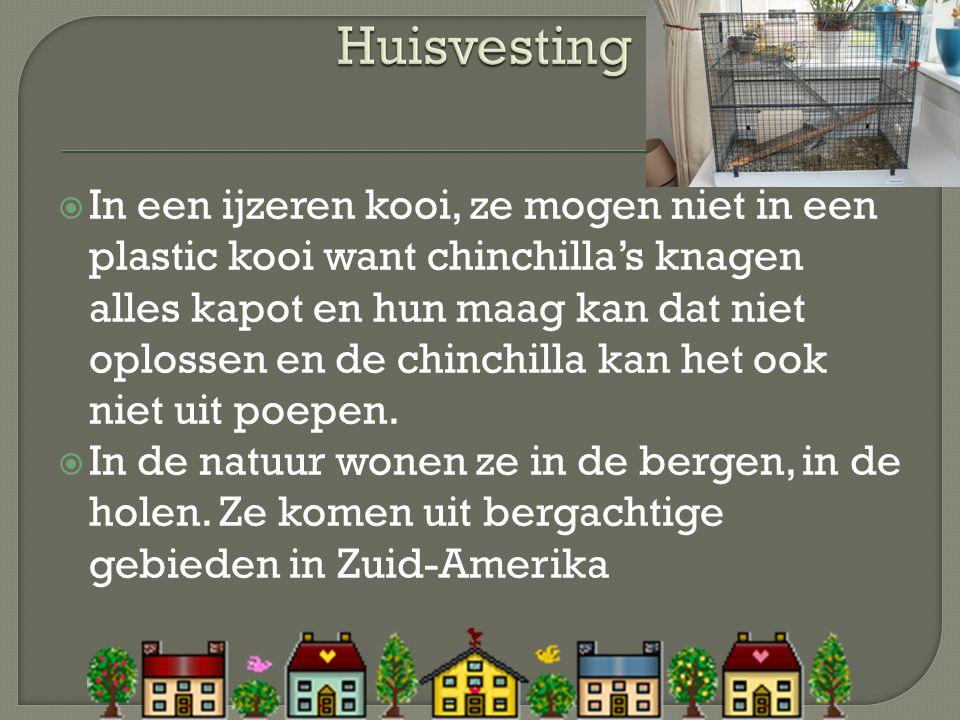 Huisvesting