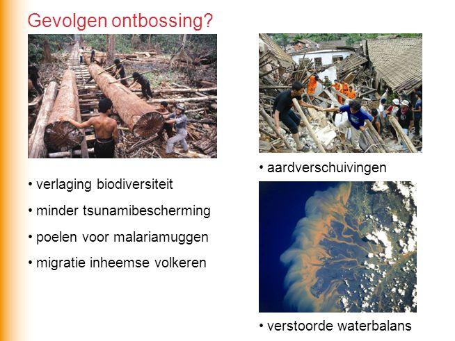 Gevolgen ontbossing aardverschuivingen verlaging biodiversiteit