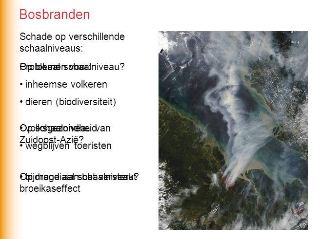 Bosbranden Schade op verschillende schaalniveaus: