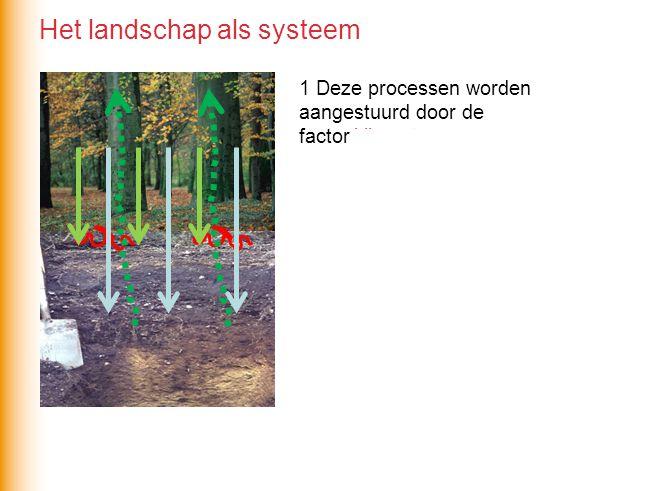 Het landschap als systeem