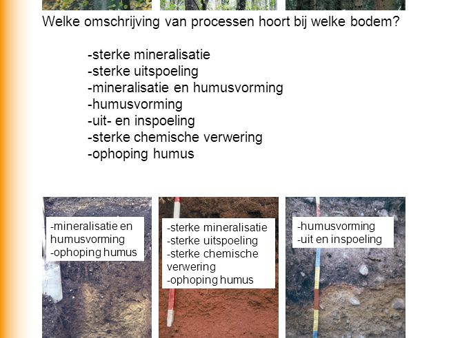 ook Welke omschrijving van processen hoort bij welke bodem