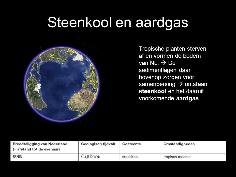 Steenkool en aardgas