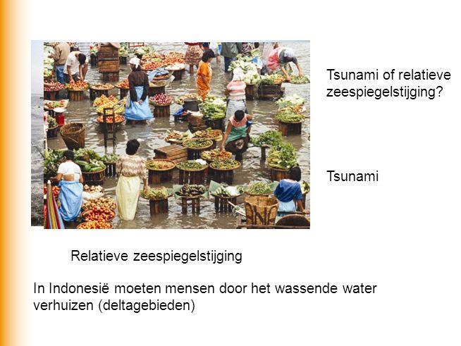 Tsunami of relatieve zeespiegelstijging