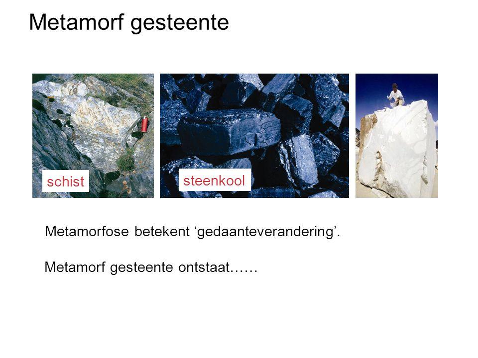 Metamorf gesteente schist steenkool