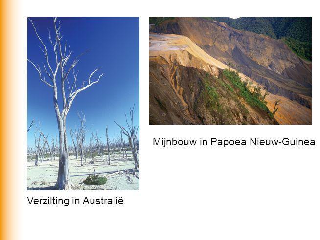 Mijnbouw in Papoea Nieuw-Guinea