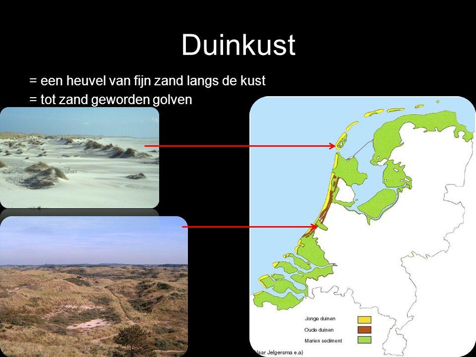 Duinkust = een heuvel van fijn zand langs de kust = tot zand geworden golven