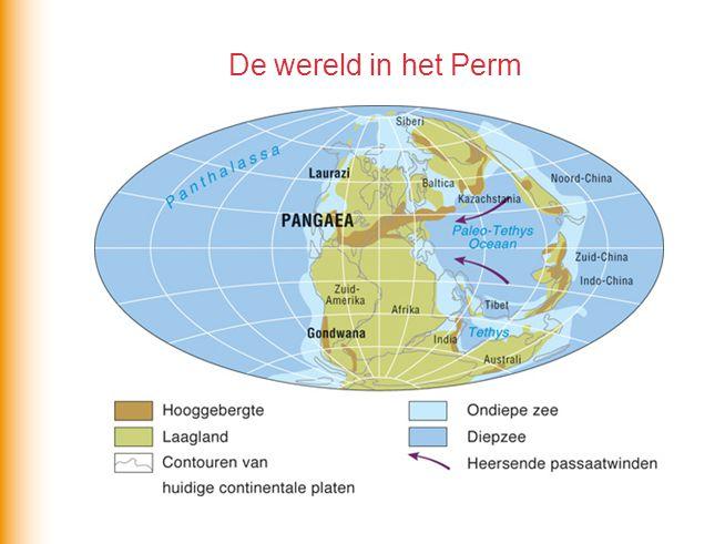 De wereld in het Perm