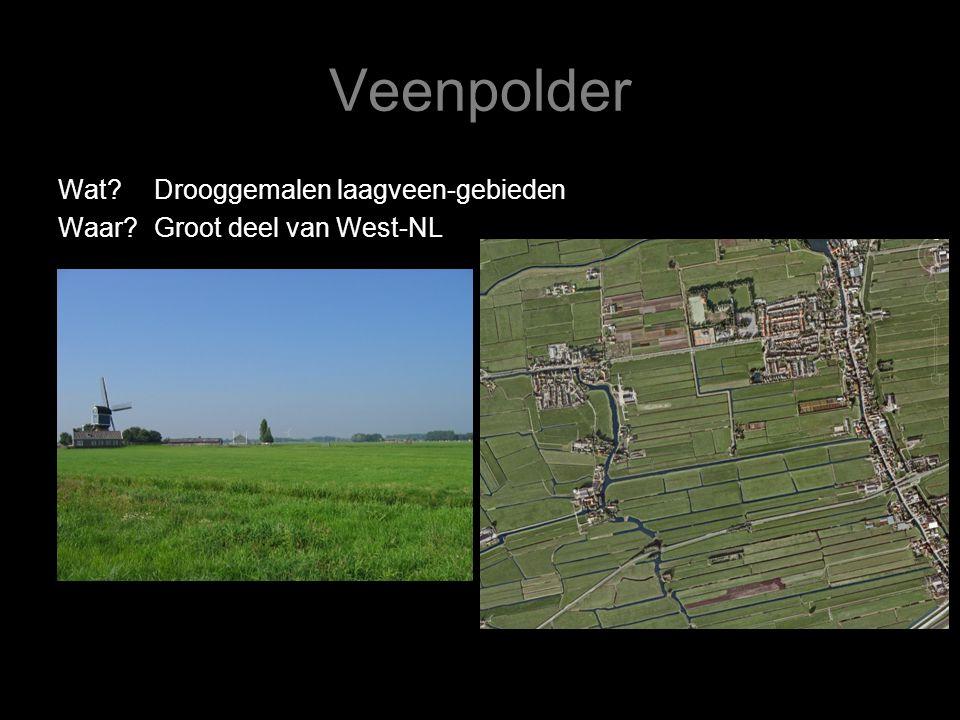 Veenpolder Wat Drooggemalen laagveen-gebieden