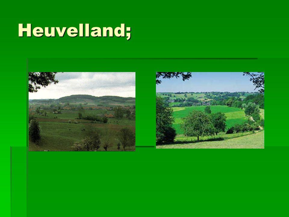 Heuvelland;