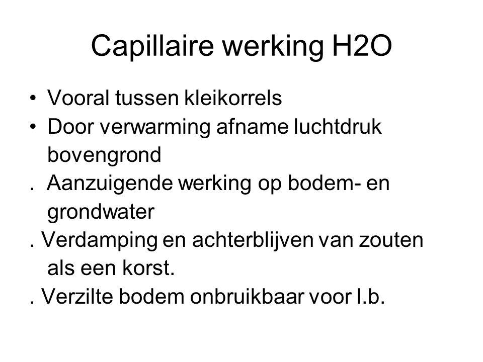 Capillaire werking H2O Vooral tussen kleikorrels