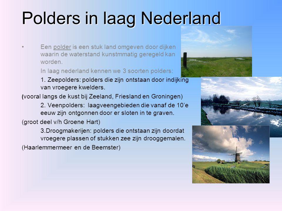 Polders in laag Nederland