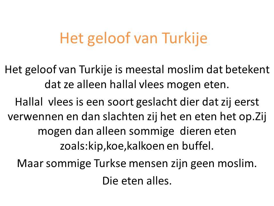 Maar sommige Turkse mensen zijn geen moslim.