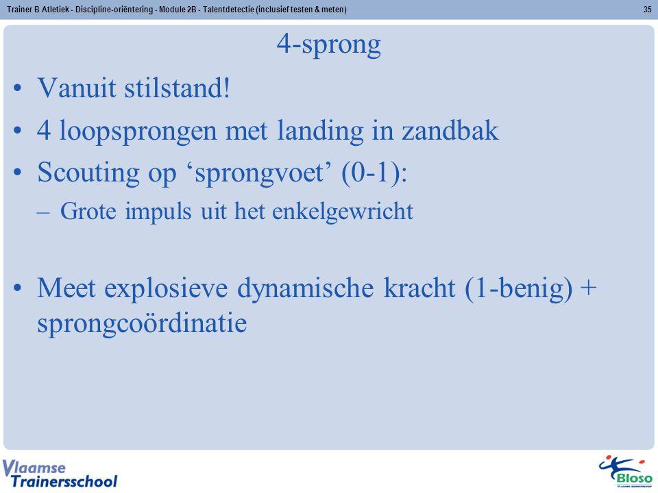 4 loopsprongen met landing in zandbak Scouting op 'sprongvoet' (0-1):